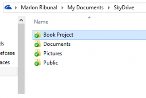SkyDrive Local Folders